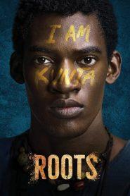 Roots Sezonul 1 Online Subtitrat in Romana HD Gratis