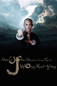Master Of The Shadowless Kick: Wong Kei-Ying (2016)