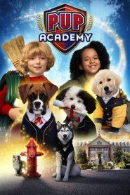 Pup Academy Sezonul 1 Online Subtitrat in Romana HD Gratis