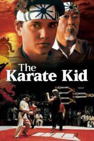 The Karate Kid (1984) Online Subtitrat in Romana HD Gratis