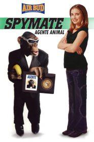 Spymate (2003)