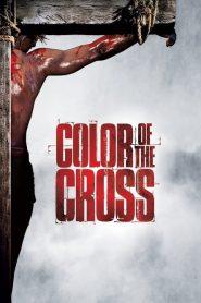 Color of the Cross (2006) Online Subtitrat in Romana HD Gratis