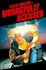 Wrongfully Accused (1998) Online Subtitrat in Romana HD Gratis