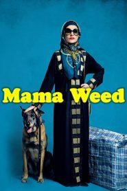 Mama Weed (2020) Online Subtitrat in Romana HD Gratis