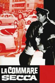 La Commare Secca (1962)