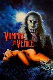 Vampire in Venice (1988) Online Subtitrat in Romana HD Gratis