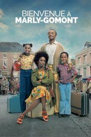 The African Doctor (2016) Online Subtitrat in Romana HD Gratis