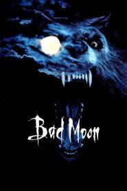 Bad Moon (1996) Online Subtitrat in Romana HD Gratis