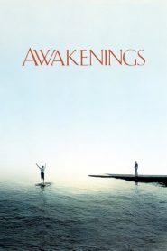 Awakenings (1990) Online Subtitrat in Romana HD Gratis