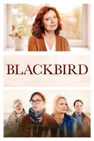 Blackbird (2019)