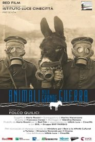 Animals in the Great War (2015)