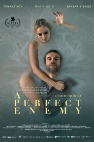 A Perfect Enemy (2021)