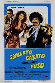 An Ideal Adventure (1982)