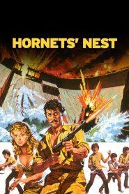 Hornets' Nest (1970)