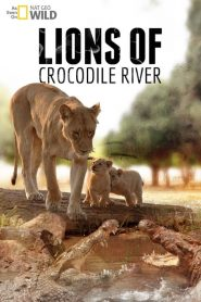 Lions of Crocodile River (2007) Online Subtitrat in Romana HD Gratis