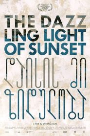 The Dazzling Light of Sunset (2016)
