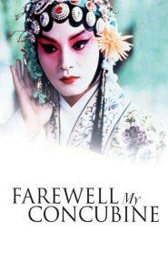 Farewell My Concubine (1993)