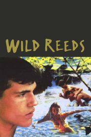 Wild Reeds (1994)