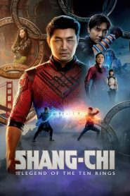 Shang-Chi and the Legend of the Ten Rings (2021) Online Subtitrat in Romana HD Gratis